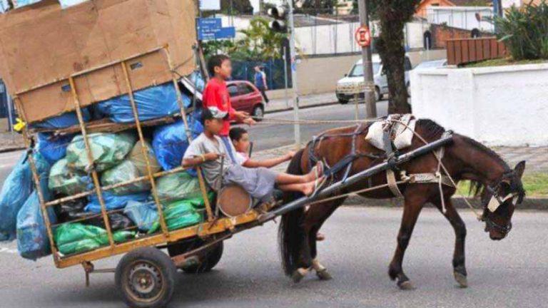 Tire os animais das carroças