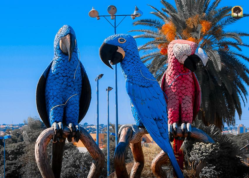 Monumentos das Araras localizado na praça da união relembra a importância da preservação das araras