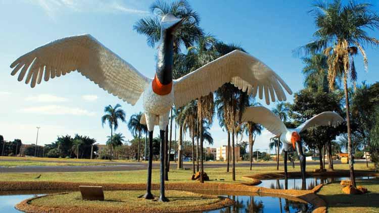 ... frente ao aeroporto de Campo Grande. Os tuiuiús são uma alusão aos  aviões c05938a913abd