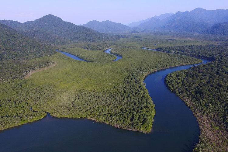A Mata Atlântica e a queda no desmatamento