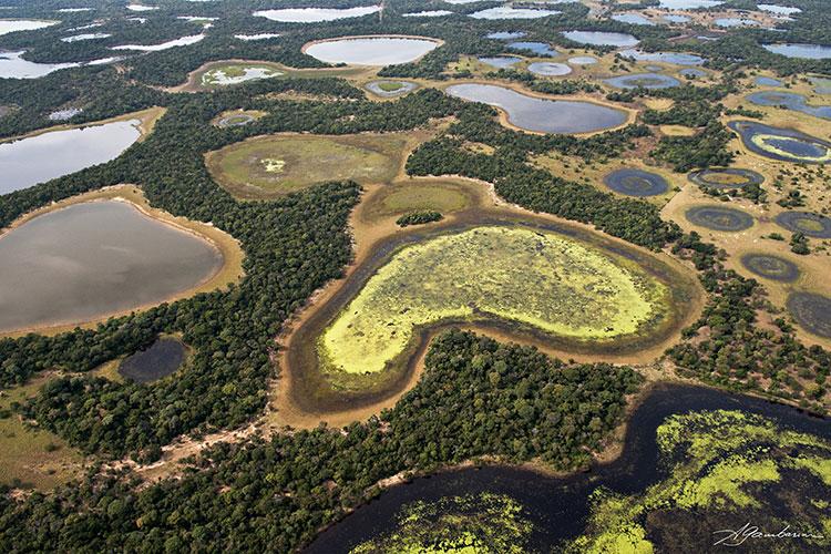 Águas do Pantanal
