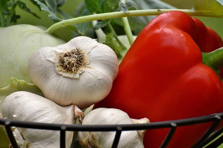 Comissão da Câmara aprova PL do Veneno, que flexibiliza uso de agrotóxico