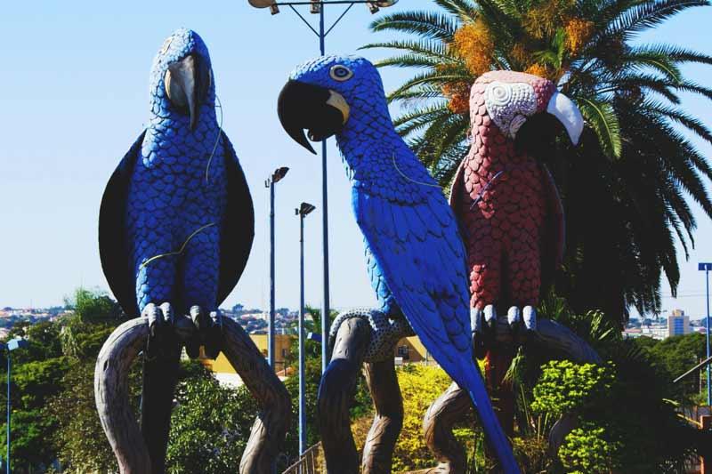 Praça das Araras em Campo Grande MS