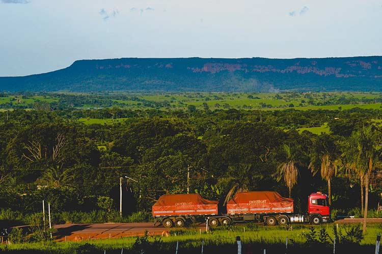 Cenário Rio Verde de Mato Grosso, em Mato Grosso do Sul