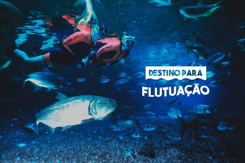 Passeios em Bonito – destino para flutuação!