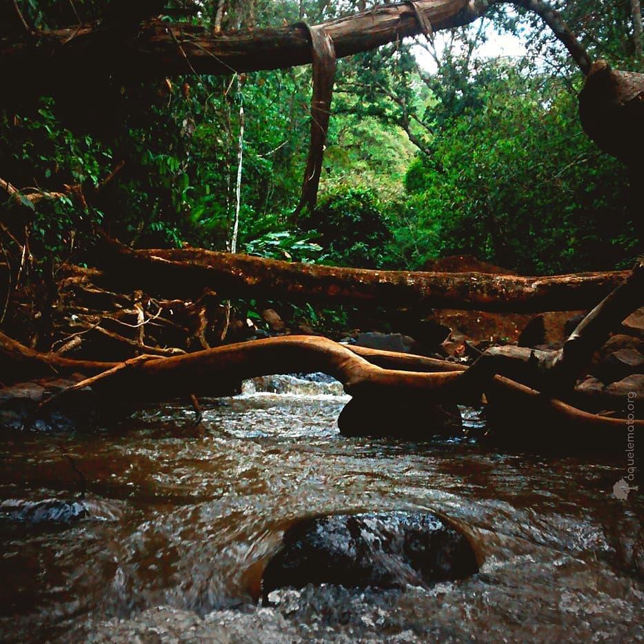 Córrego Ceroula