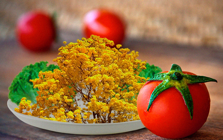 Ipê é planta comestível?