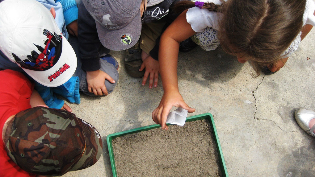 Educação ambiental – como ensinar as crianças