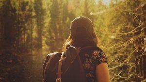 Um dia de trilha