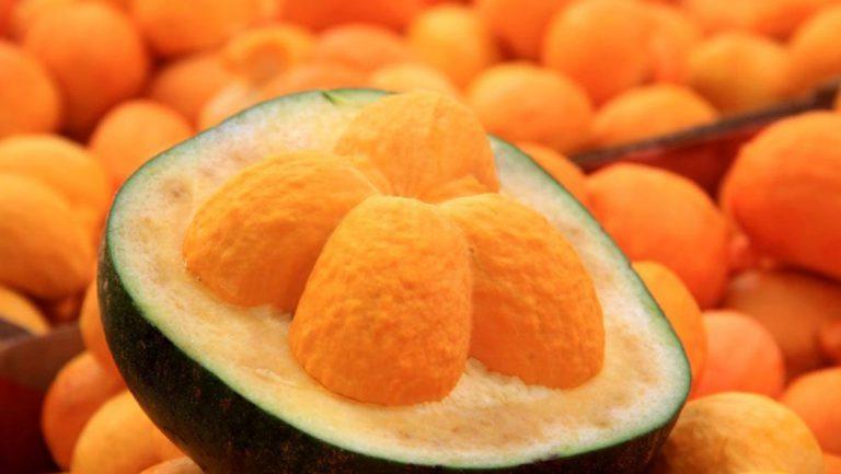 Receitas com frutas do cerrado
